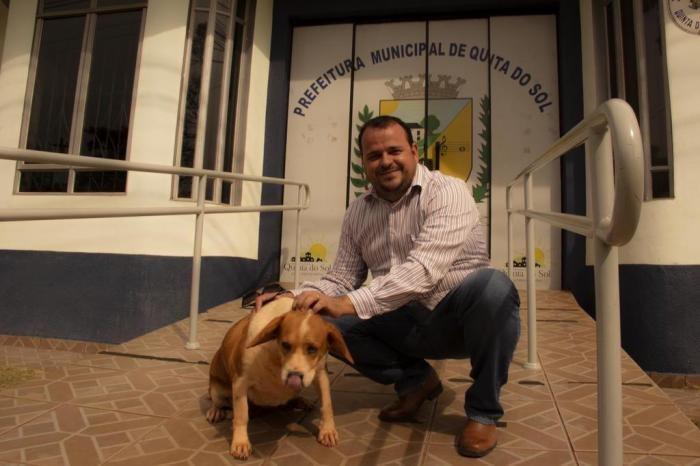 Adotar cães dá até 50% de desconto no IPTU em cidade do Paraná